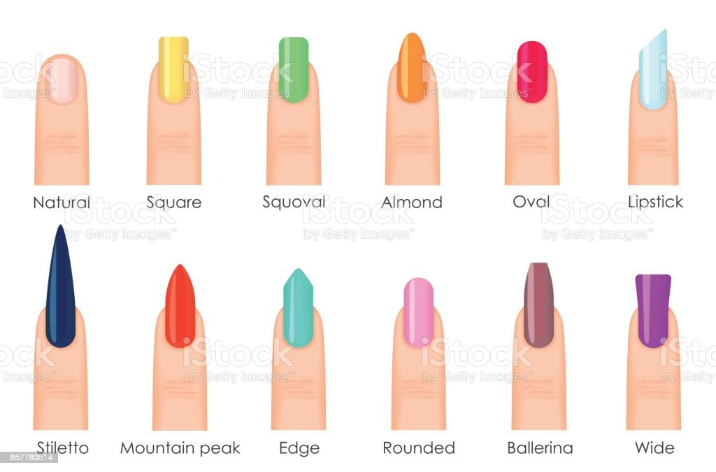 Nails Shape Icons Set Types Of Fashion Bright Colour Nail Shapes ...