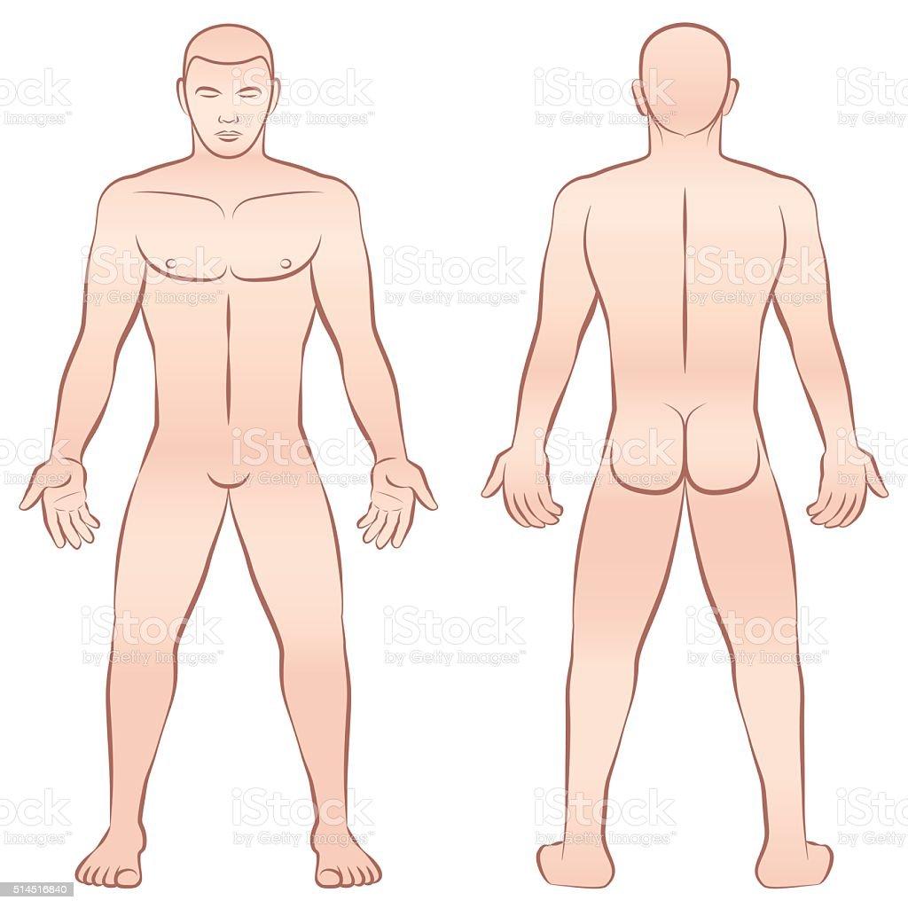 Naked Male Body Outline Illustration Royalty Free Stock Vector Art