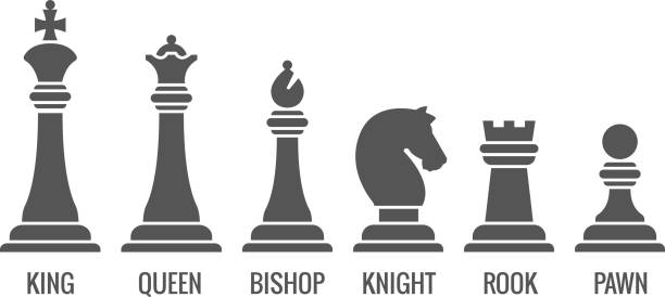 Named chess piece vector icons set Named chess piece vector. Icons set of chess figures queen and king, illustration rook pawn and knight for chess chess knight silhouette stock illustrations