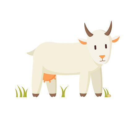 Nanny Goat Standing on Grass Cartoon Character