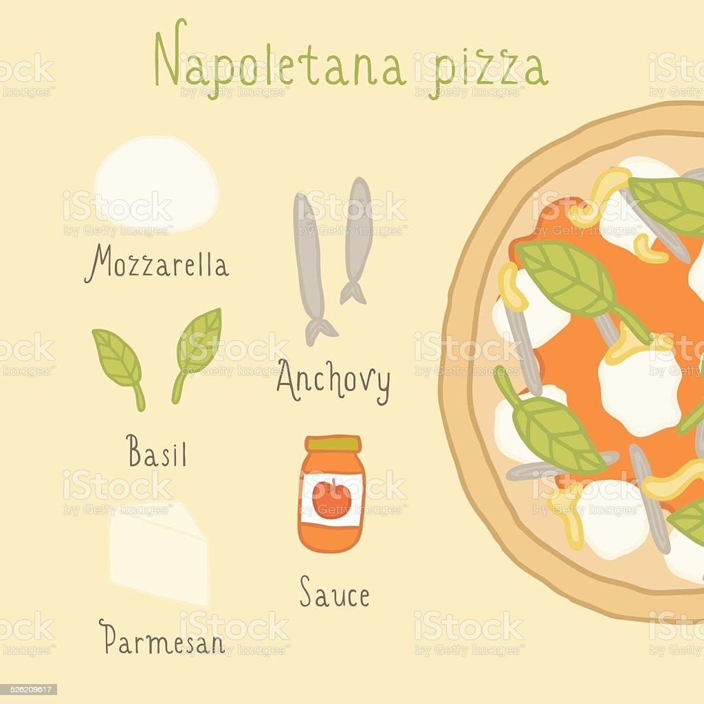 Napoletana pizza ingredients. vector art illustration