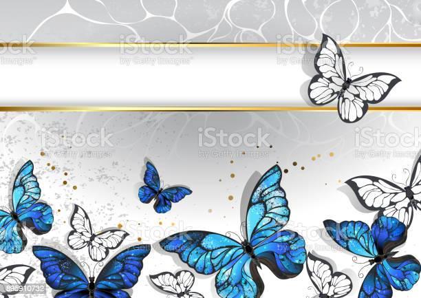 Narrow banner with butterflies morpho vector id895910732?b=1&k=6&m=895910732&s=612x612&h=u5lamlp4v7wz0g8coxmfw3tag2iztytnsusqcyw5hw0=