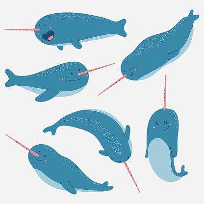 Narwhal vector cartoon characters set isolated on a white background.