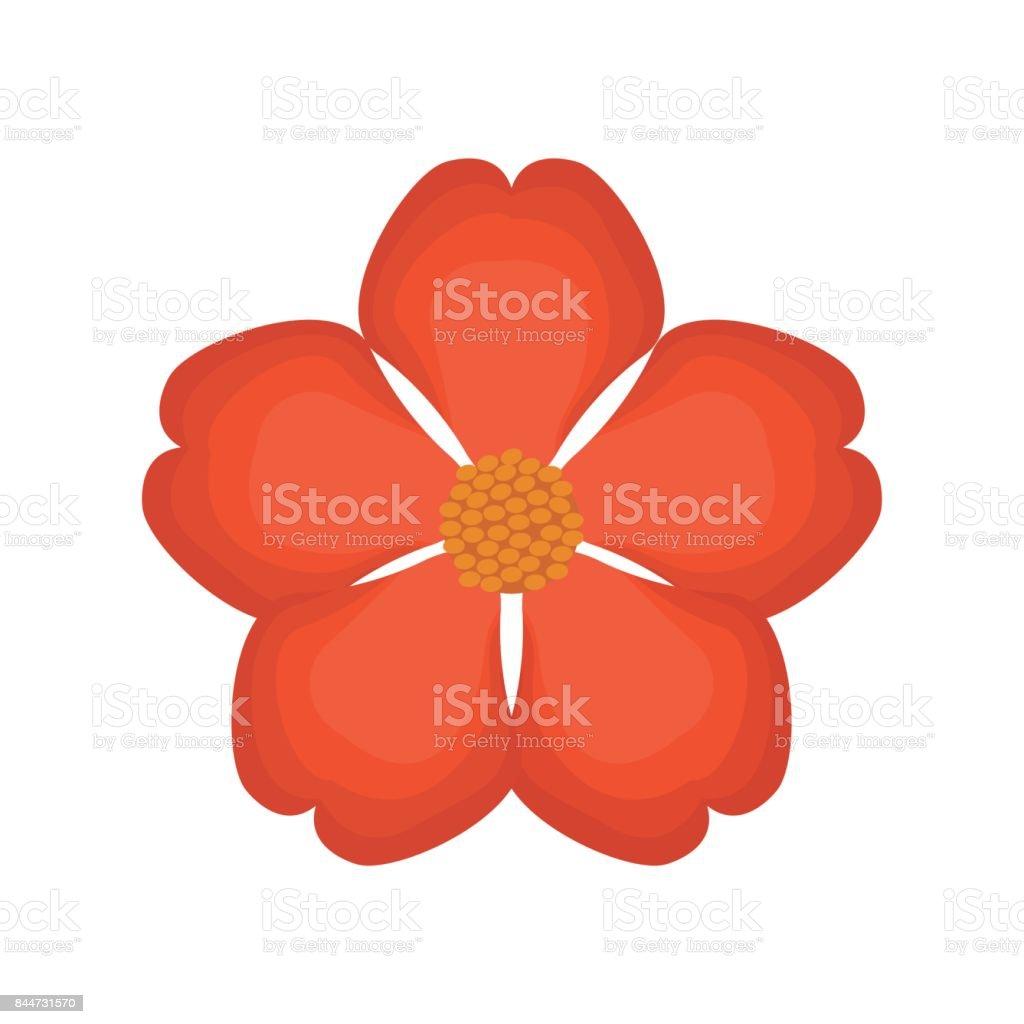 nasturtium flower spring image royalty-free nasturtium flower spring image stock illustration - download image now
