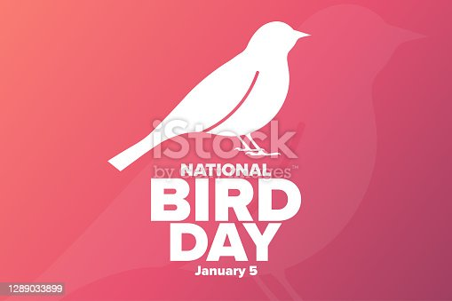 istock National Bird Day. January 5. Holiday concept. Template for background, banner, card, poster with text inscription. Vector EPS10 illustration. 1289033899
