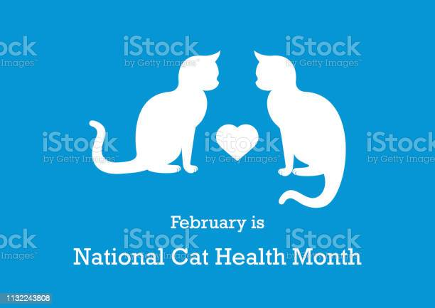 National cat health month vector vector id1132243808?b=1&k=6&m=1132243808&s=612x612&h=aeywildstts7oidj 6ulewjm6fkn0t84hoxjnj78yhs=
