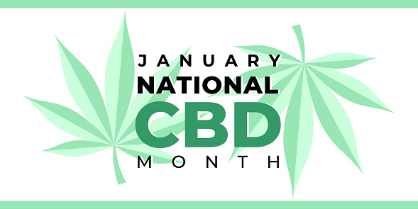 National CBD month. Vector banner, poster, card for web, social media, networks. Green cannabis hemp leaf on a white background and text National CBD month january. Celebrated in the United States.