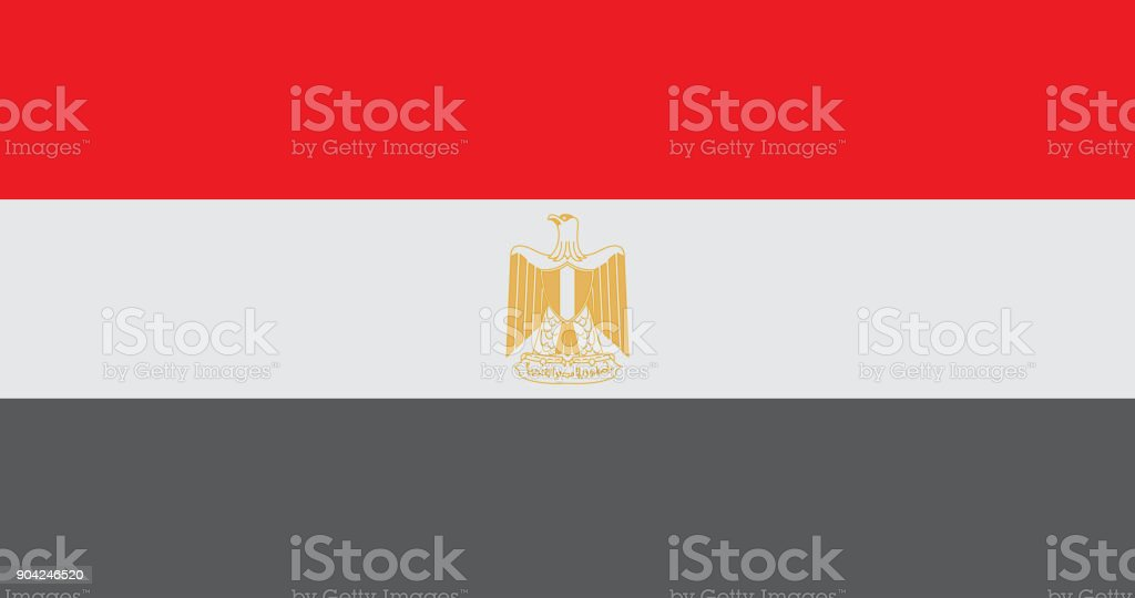 National Egypt Flag Vectoregypt Flag Official Colors And Proportion