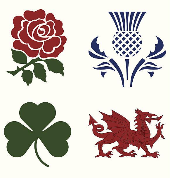 uk national emblems - wales stock illustrations, clip art, cartoons, & icons