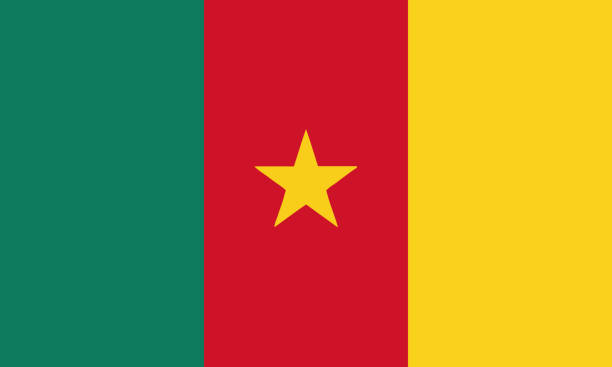 nationalflagge kamerun - kamerun stock-grafiken, -clipart, -cartoons und -symbole