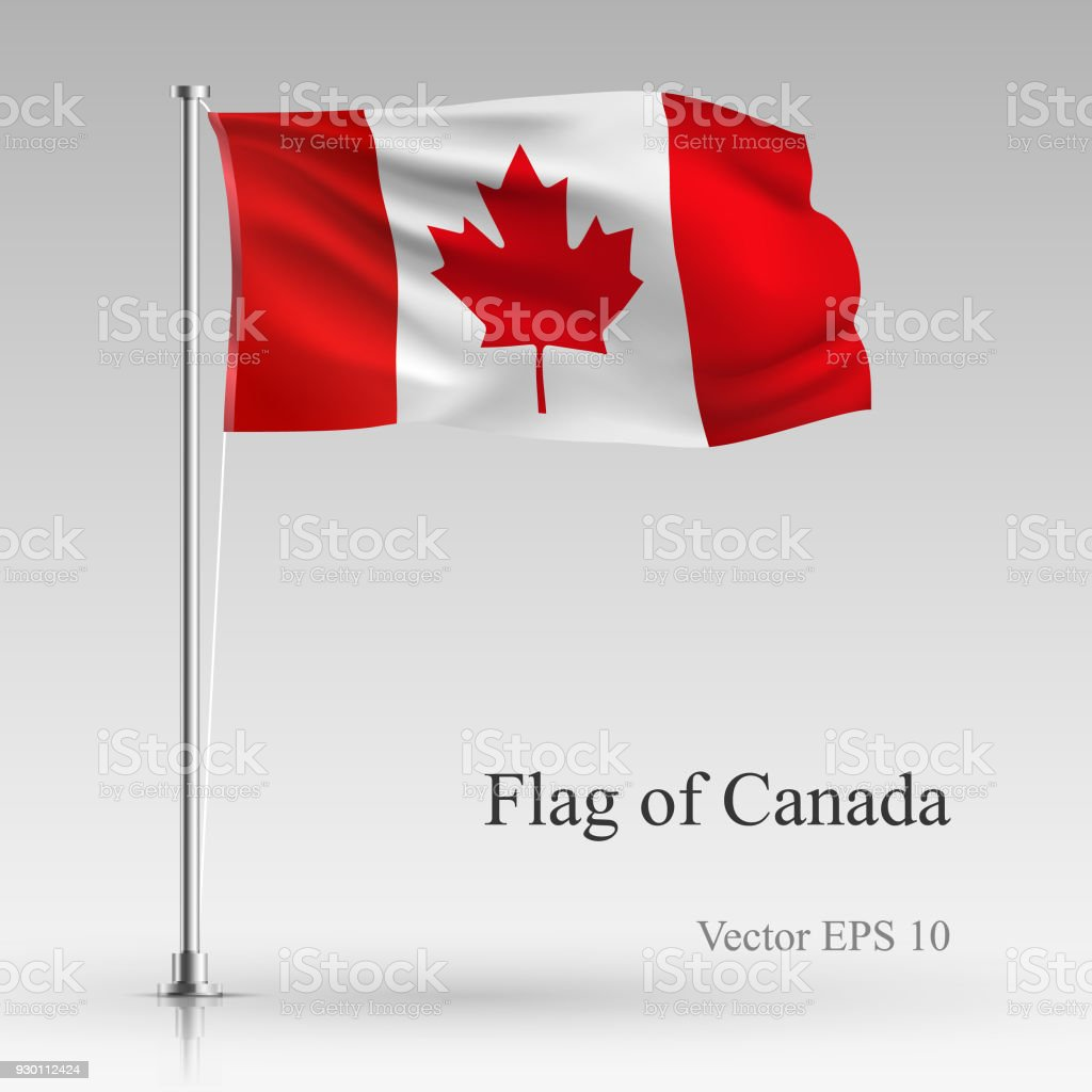 National flag of Canada isolated on gray background. Realistic Canadian flag waving in the Wind. Wavy flag Stock Vector illustration vector art illustration