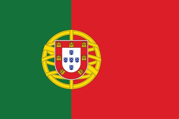 stockillustraties, clipart, cartoons en iconen met nationale vlag van portugal land. - portugal