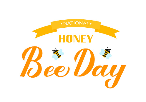 National Honey Bee Day calligraphy hand lettering with cute cartoon bees isolated on white. Easy to edit vector template for banner, poster, flyer, sticker, postcard, t-shirt, etc