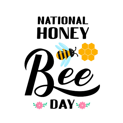 National Honey Bee Day calligraphy hand lettering with cute cartoon bee and honeycomb isolated on white. Easy to edit vector template for banner, poster, flyer, sticker, postcard, t-shirt, etc.