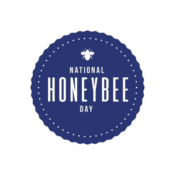 illustrazioni stock, clip art, cartoni animati e icone di tendenza di national honeybee day - impollinazione