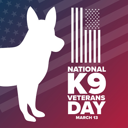 National K9 Veterans Day. March 13. Holiday concept. Template for background, banner, card, poster with text inscription. Vector EPS10 illustration.