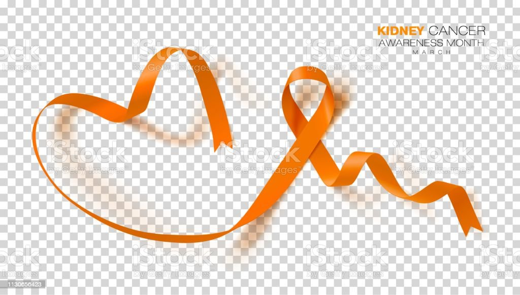 National Kidney Cancer Awareness Month Orange Color Ribbon Isolated On Transparent Background Vector Design Template For Poster Stock Illustration Download Image Now Istock