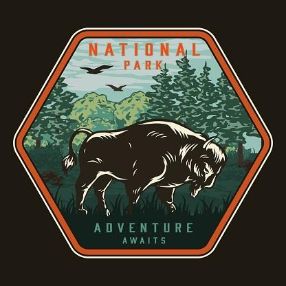 National park colorful vintage badge