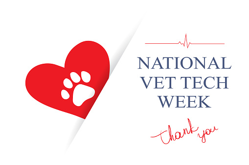 Red heart, dog paw ant text Thank You on white, vector illustration. Vet Tech Appreciation Week annual event.
