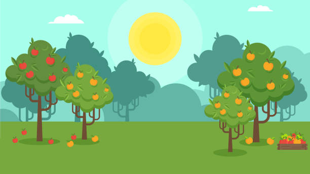 Natural Autumn landscape with an apple orchard vector art illustration