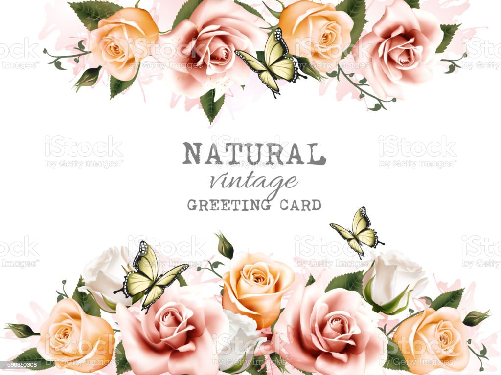 Natural background with roses. Vintage vector. royalty-free natural background with roses vintage vector stock vector art & more images of abstract
