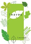 Natural card with stylized green leaves. Spring or summer foliage