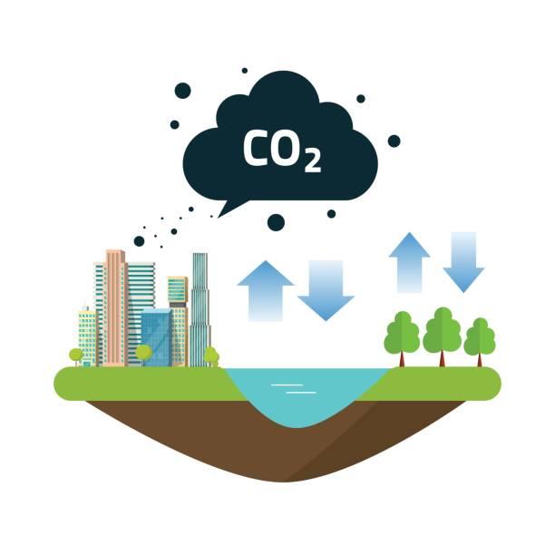 bildbanksillustrationer, clip art samt tecknat material och ikoner med co2 naturliga utsläpp kolbalans cykla mellan ocean källa, staden eller staden produktioner och skog - co2