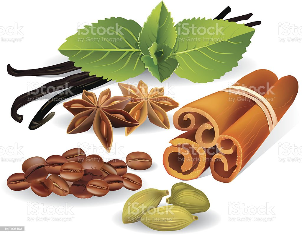 Natural flavors and spices vector art illustration