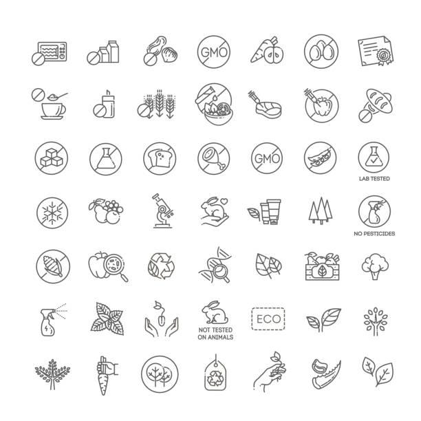 ilustrações, clipart, desenhos animados e ícones de os ícones lisos naturais da linha do alimento ajustaram-se. sinais finos para empacotamento - condição natural