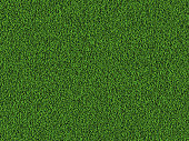 Natural grass texture background in bright yellow green color tone. Top view. Vector eps10.