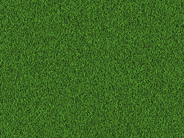 Natural grass texture background. Natural grass texture background in bright yellow green color tone. Top view. Vector eps10. grass area stock illustrations
