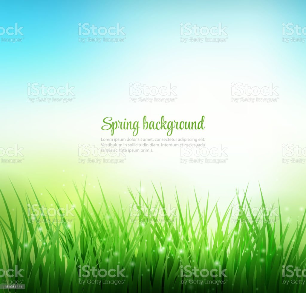 Natural green grass background vector art illustration