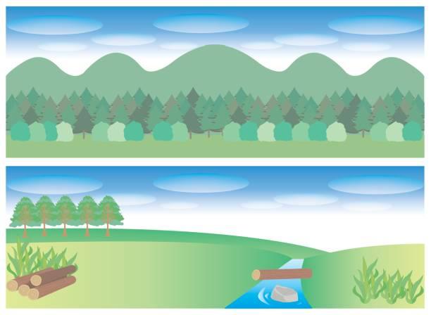 illustrazioni stock, clip art, cartoni animati e icone di tendenza di natural image set  for title background - forest bathing