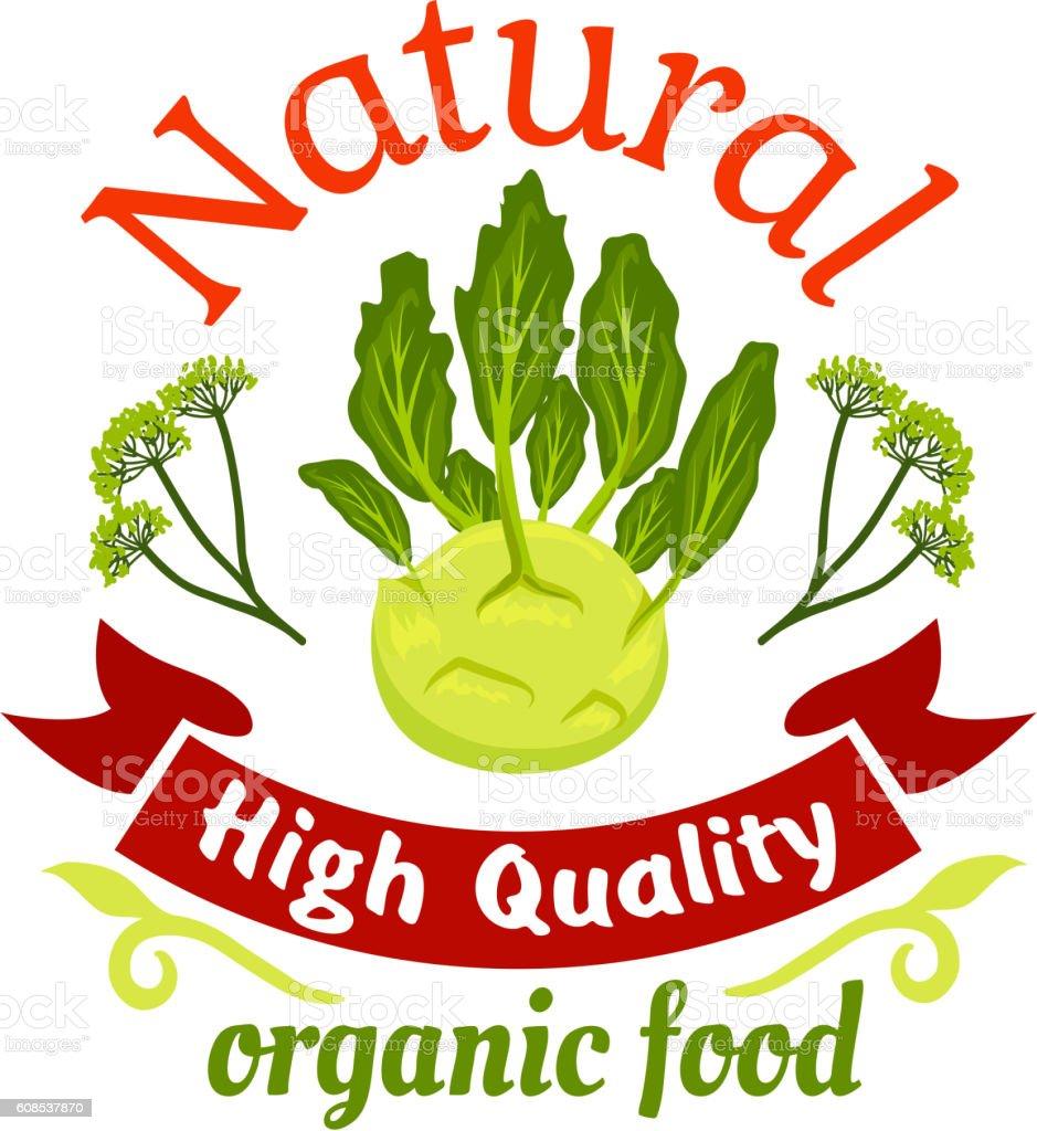Natural organic food kohlrabi icon vector art illustration