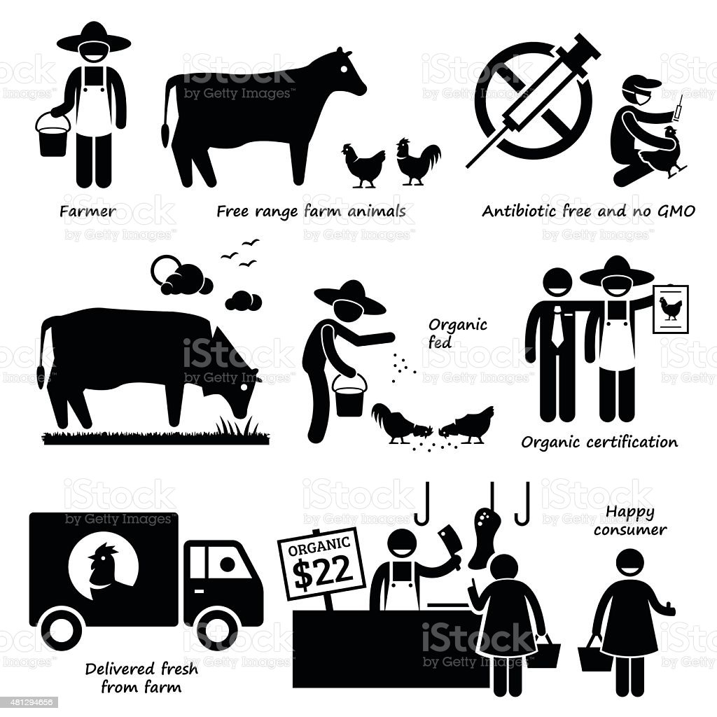 Natural Organic Meat Beef Chicken Poultry Stick Figure Pictogram Icons vector art illustration