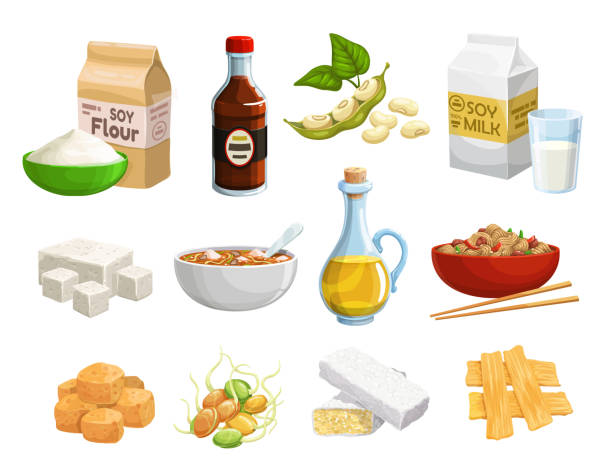 Natural organic soy food products and healthy meal Soy food and vegan products, organic healthy natural nutrition. Vector soy food products, meat and cheese, milk and oil, soybeans sprouts, butter and flour, tofu skin and vegan eating ingredients temps stock illustrations
