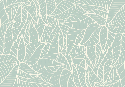 Natural Pattern,Abstract,Curve shape,Leaf Green colour Background
