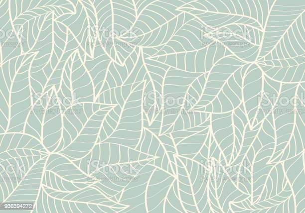 Natural patternabstractcurve shapeleaf green colour background vector id936394272?b=1&k=6&m=936394272&s=612x612&h=5wkkms3vafjukxf63z3qsvizgf flwl8uqgwhqdlrdq=