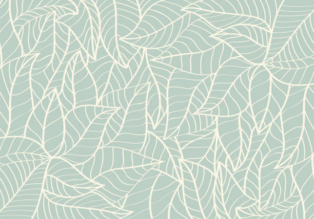 illustrazioni stock, clip art, cartoni animati e icone di tendenza di natural pattern,abstract,curve shape,leaf green colour background - foglie