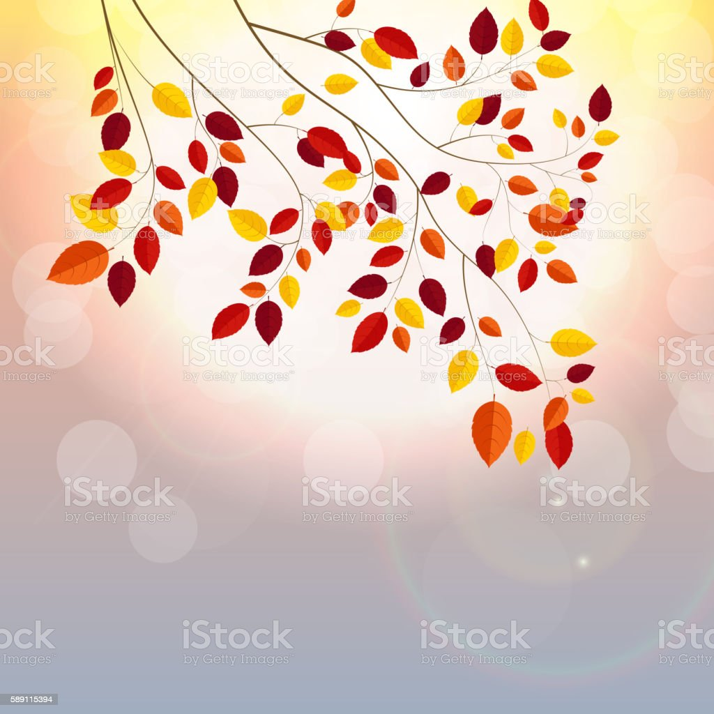 Natural Sunny Autumn Leaves Background Vector Illustration vector art illustration
