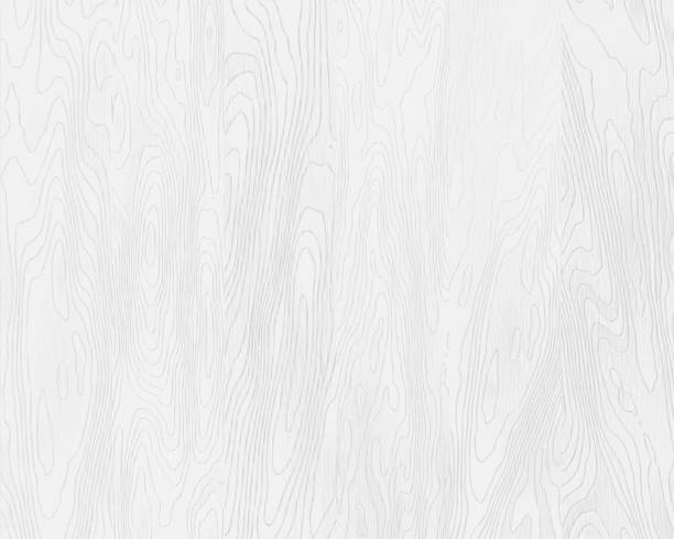 natural white wood texture, painted boards, realistic wooden background, vector - wood texture stock illustrations