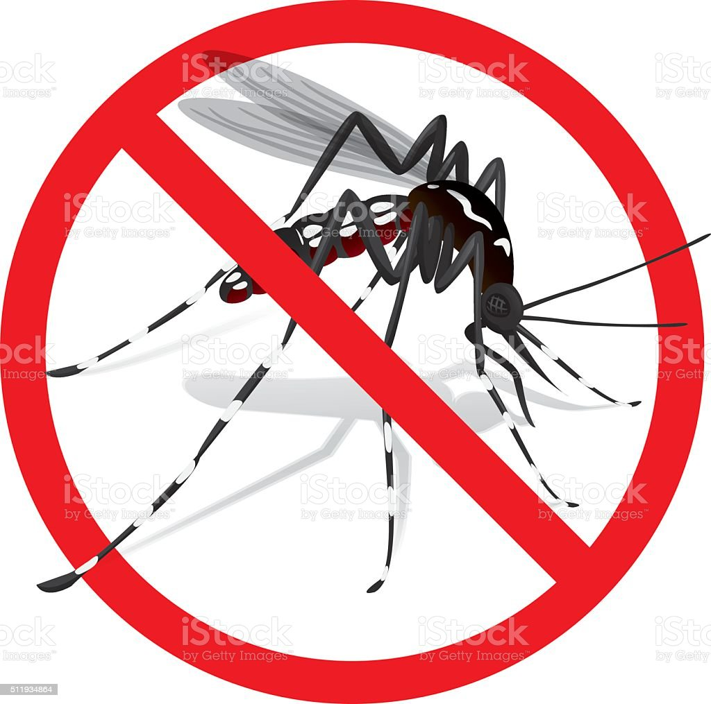 Nature, Aedes Aegypti Mosquito stilt with prohibited sign vector art illustration