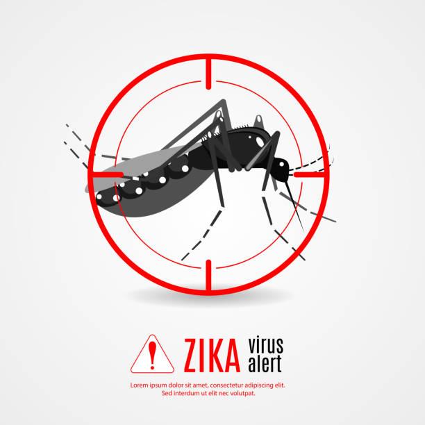illustrazioni stock, clip art, cartoni animati e icone di tendenza di nature, aedes aegypti mosquitoes with stilt target. sights signal. - zanzare