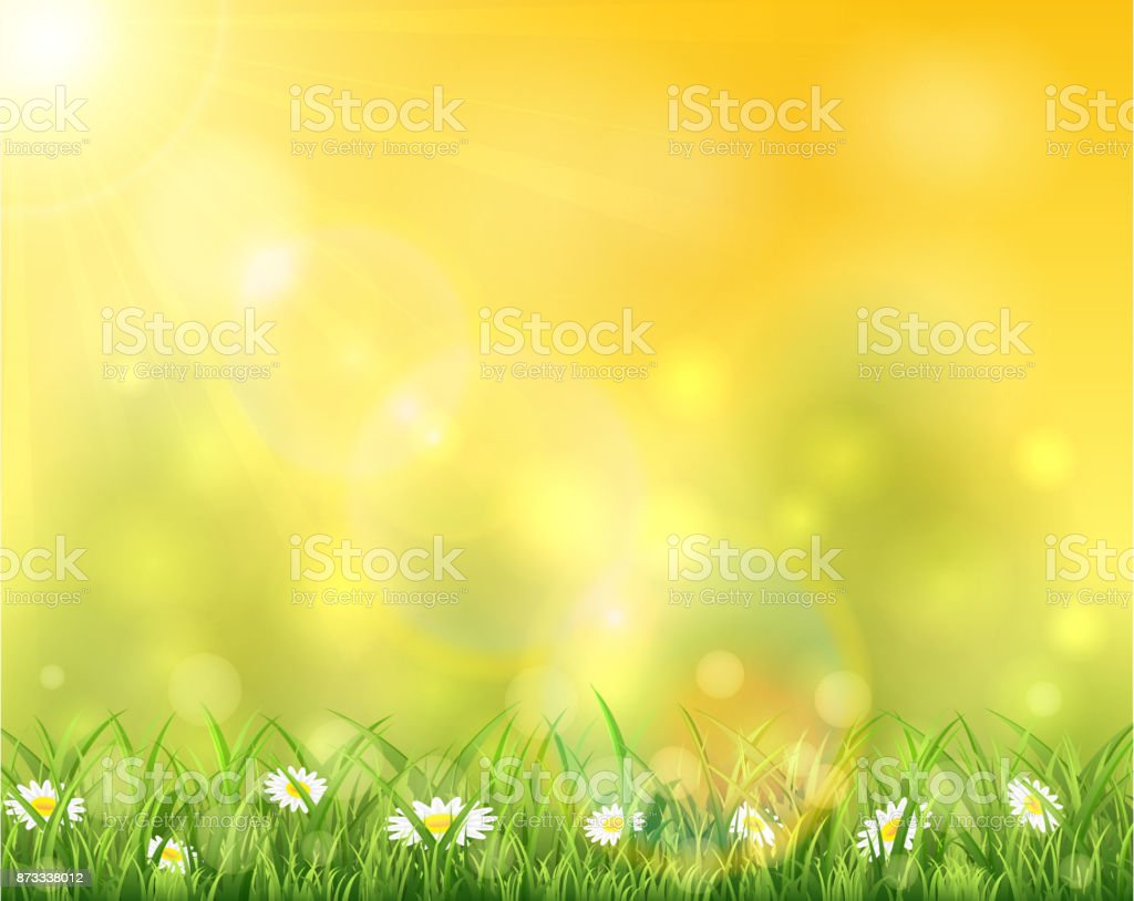 Nature and sun over grass vector art illustration