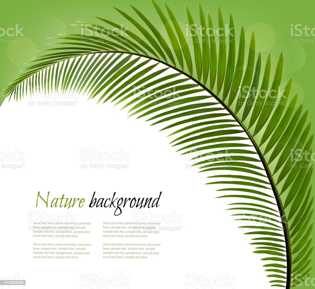 Nature background with a palm leaf. Vector vector art illustration