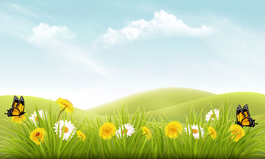 Nature background with grass and flowers and butterflies. Vector.