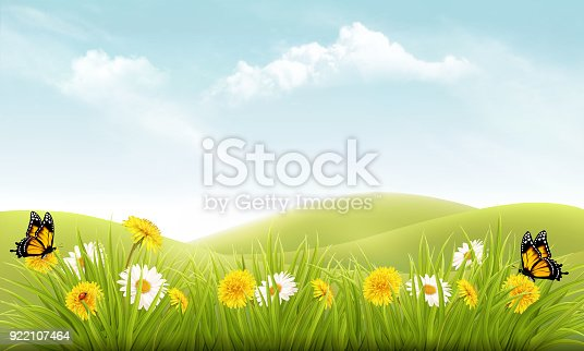 istock Nature background with grass and flowers and butterflies. Vector. 922107464