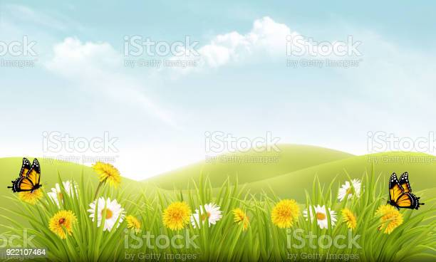 Nature background with grass and flowers and butterflies vector vector id922107464?b=1&k=6&m=922107464&s=612x612&h=y0jzsbeiqtydgo1zampiwsqhd7opaddb8txe78xc76k=