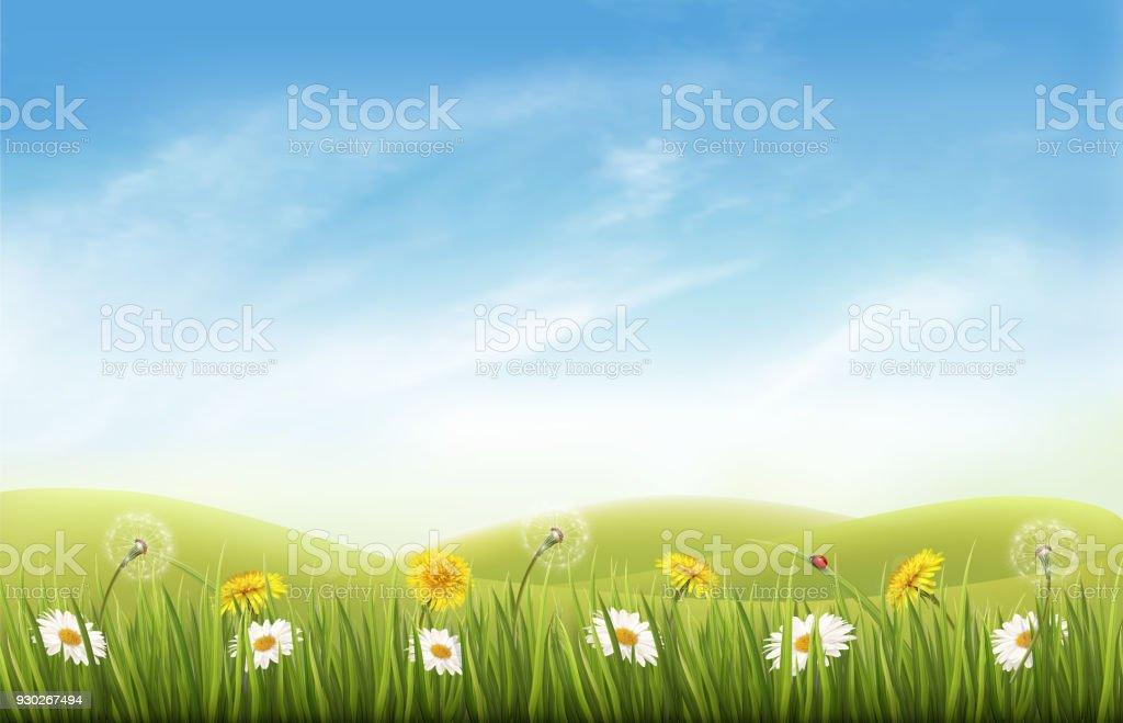 çim Ve çiçek Ve Kelebek Ile Doğa Arka Plan Vektör Stok Vektör Sanatı
