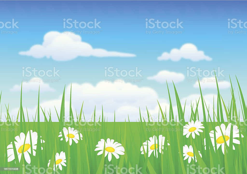 nature background with grass and flowers royalty-free stock vector art